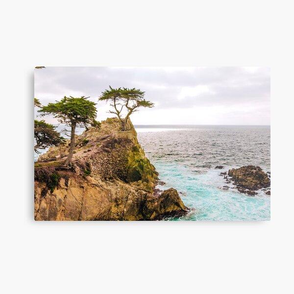 0720 California Pacific Coast Road Trip Metal Print