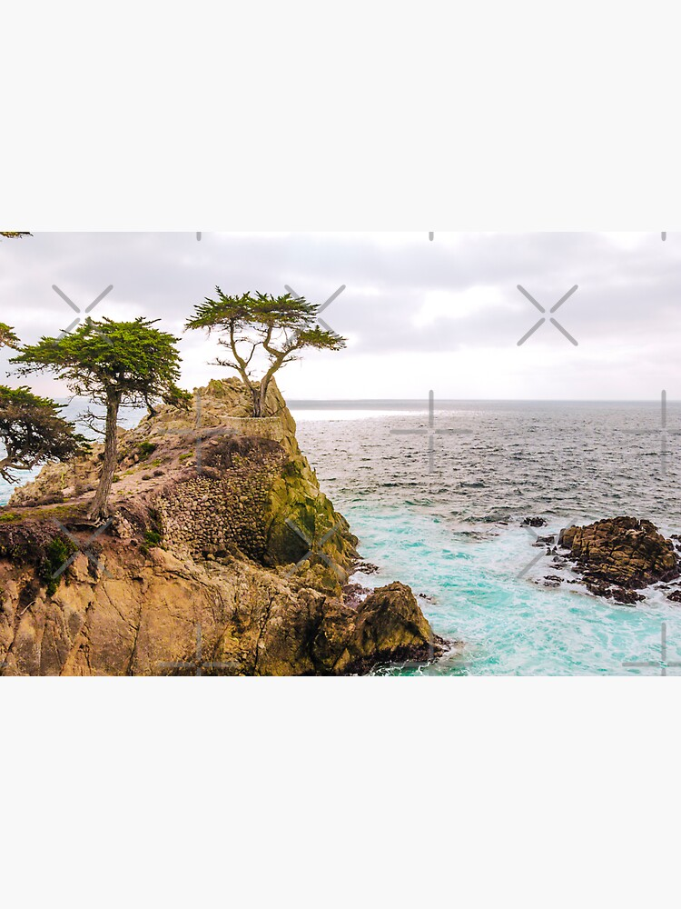 0720 California Pacific Coast Road Trip by neptuneimages