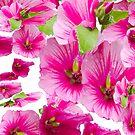 pink flowers aplenty by bywhacky