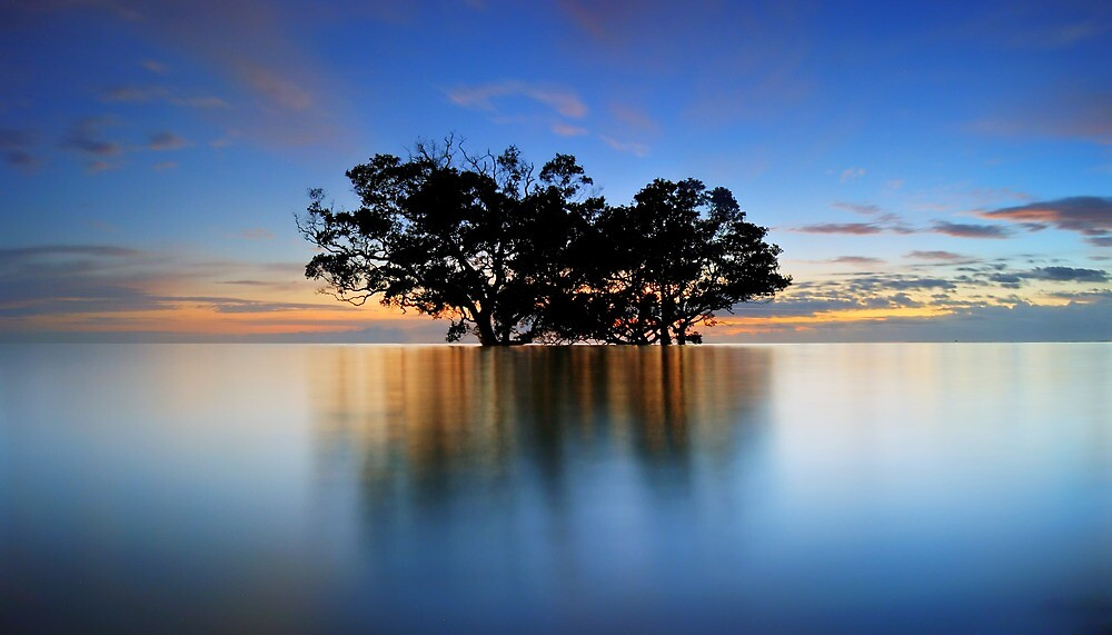 High tide at Nudgee Beach by David James
