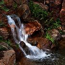 Hidden Falls by Angela  Ardis