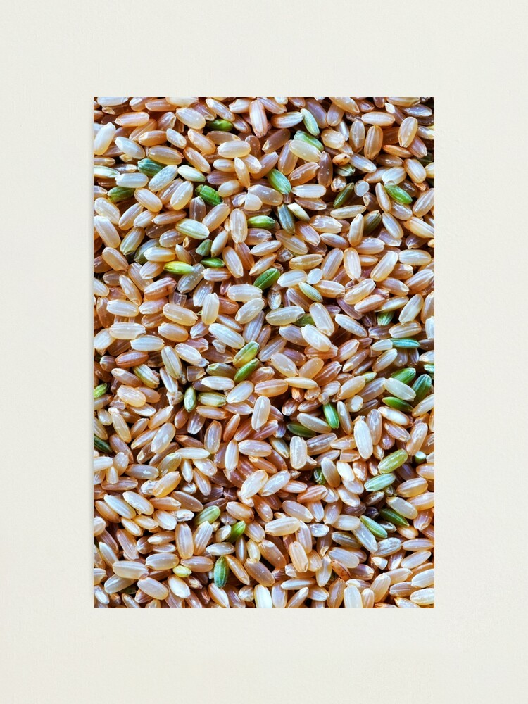 Alternate view of A macro photo of some brown rice Photographic Print