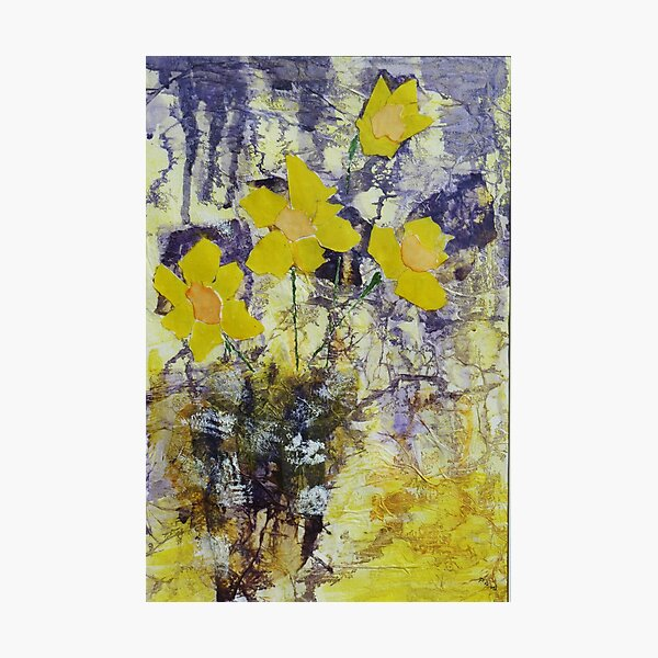 Daffodil time Photographic Print