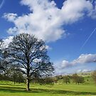 Ilam by Mike Topley