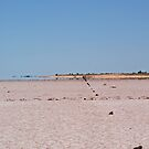 Fence Line ,Lake Ballard,West Australia. by robynart