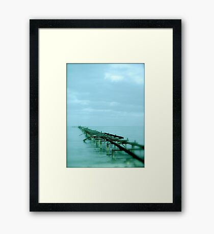Trying to make sense of it all... Framed Print
