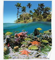 Tropical island and colorful underwater marin life Poster