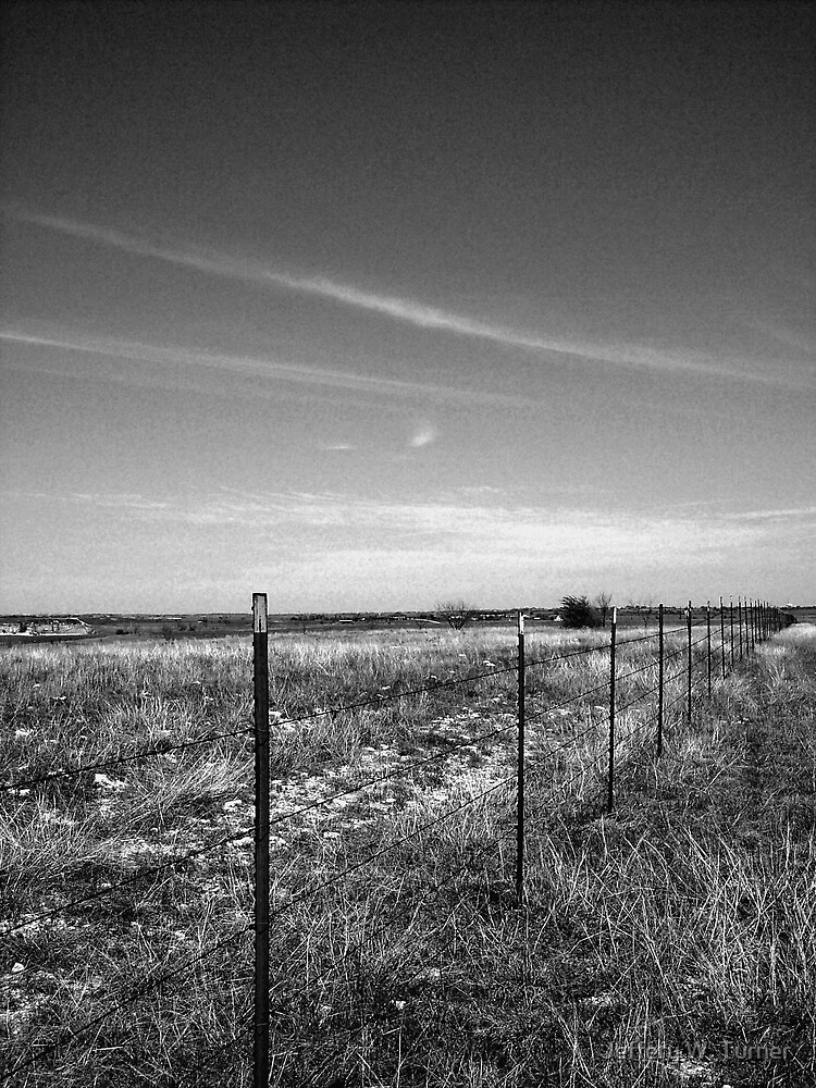 A Wire On The Fence And A Wire In The Sky by Jeffery W. Turner