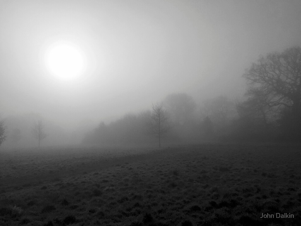 Foggy Morning by John Dalkin
