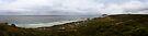 Seal Bay, Kangaroo Island. by Andy Newman