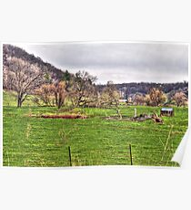 Lonely Pasture Poster