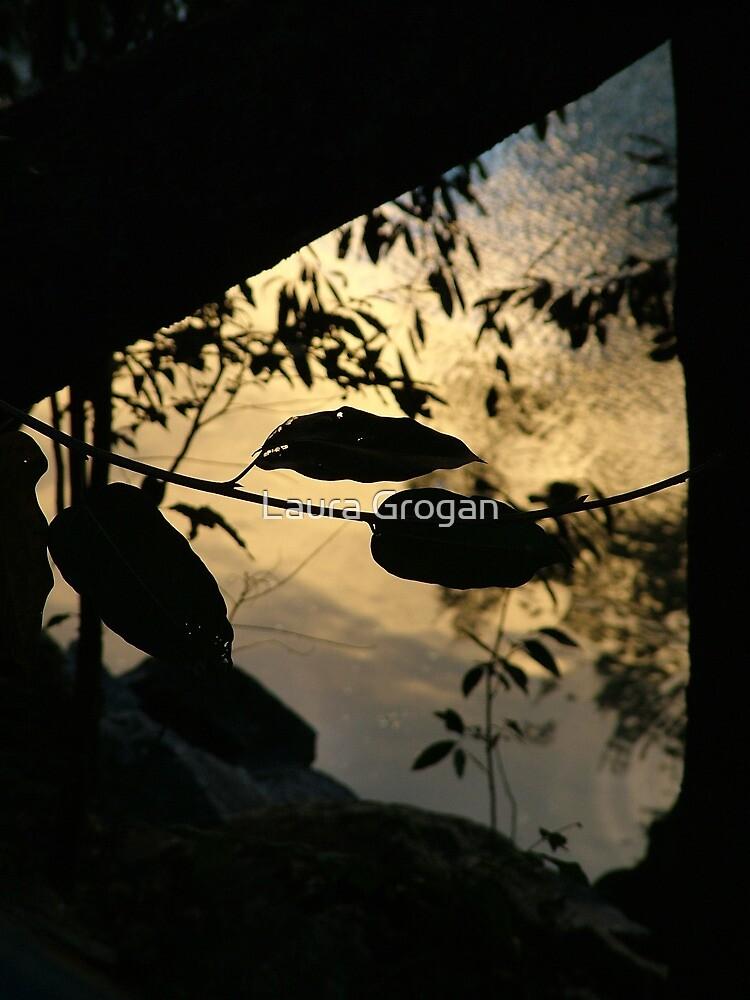 Barron river at sunset (QLD, Australia) by Laura Grogan