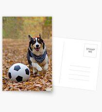 Four-legged Soccer Player Postcards