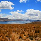 Peruvian Landscape by David McGilchrist