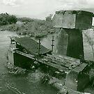 Bridge to Nowhere - Iguazu, Argentina by David McGilchrist