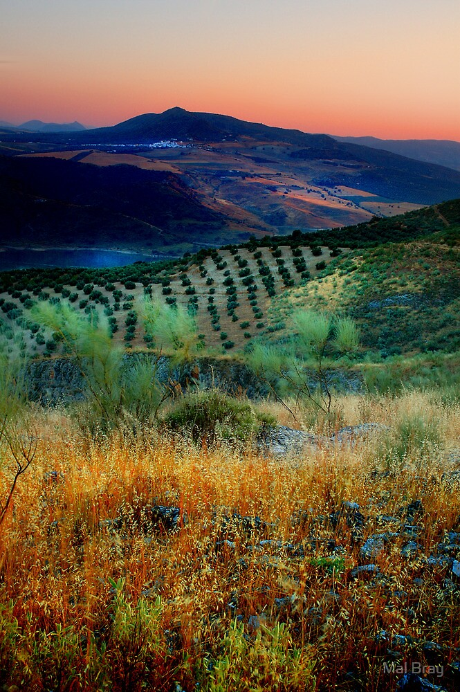 Sunset over an Andalucian Landscape, Spain. by Mal Bray