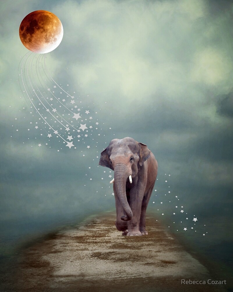 Dreamer by Rebecca Cozart