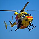The Chopper by Richard  Windeyer