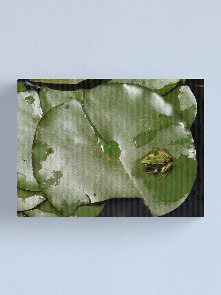 Alternate view of These green things are much more comfortable than the pink things! Canvas Print