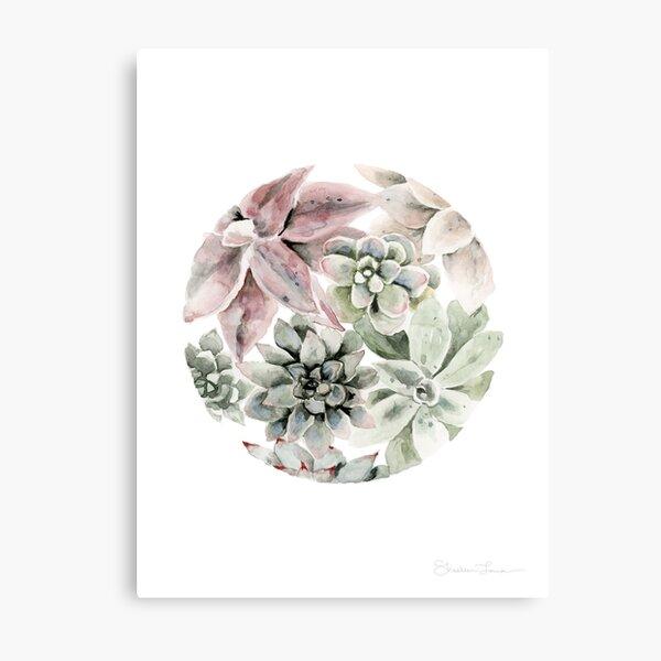 Circular Succulents Metal Print