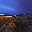 Desert Highway Lights by MattGranz