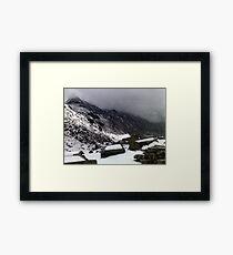Nature's challenge Framed Print