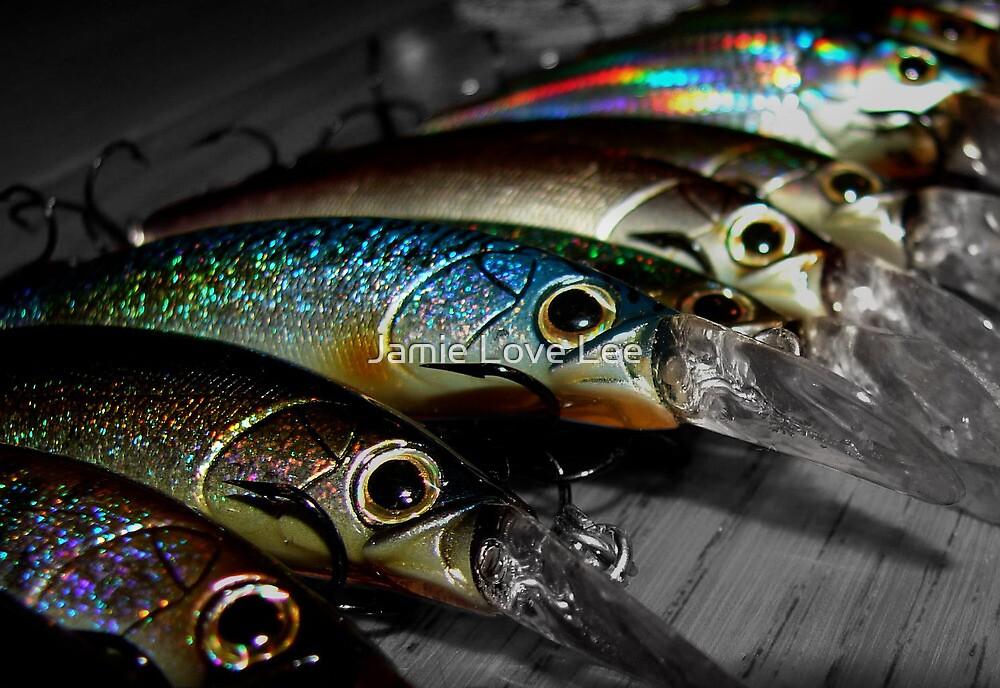 Go Fish! by Jamie Lee
