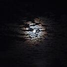 Whispers of Moonlight by Celeste Thinks