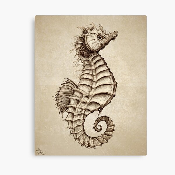 """Fantasy Seahorse"" by Amber Marine~ vintage style ink illustration, © 2016 Canvas Print"