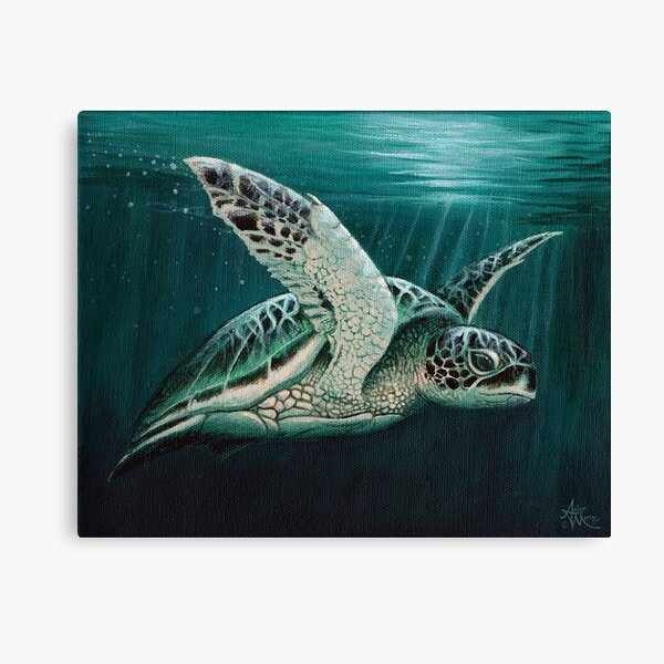 """Moonlit"" by Amber Marine ~ Acrylic sea turtle painting, art © 2015 Canvas Print"