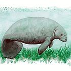 """""""The Manatee"""" by Amber Marine ~ Watercolor painting, art © 2015 by Amber Marine ~ Wildlife Artist ~ © 2004-2019"""