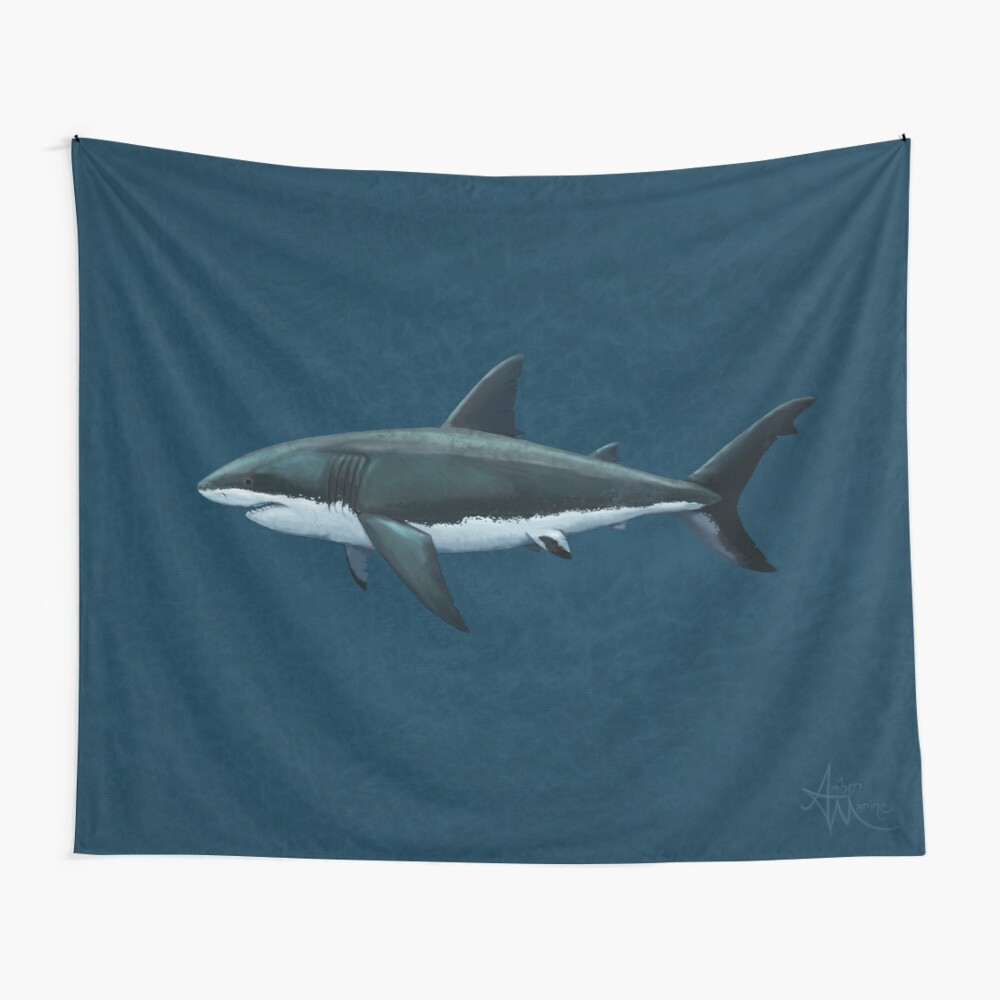Carcharodon carcharias by Amber Marine, great white shark illustration, art © 2015 Wall Tapestry