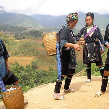 Hmong Business Ladies  by yiska