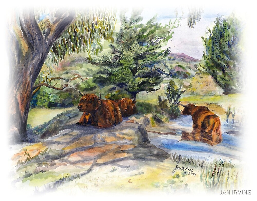 Highland Cattle - Idle Summer Hours by JAN IRVING