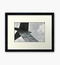 Patriot Wing Framed Print