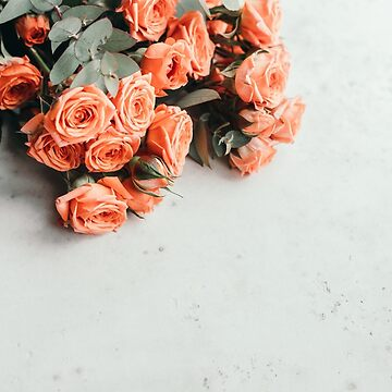 Coral roses beautiful spring bouquet on a white background. by Edalin