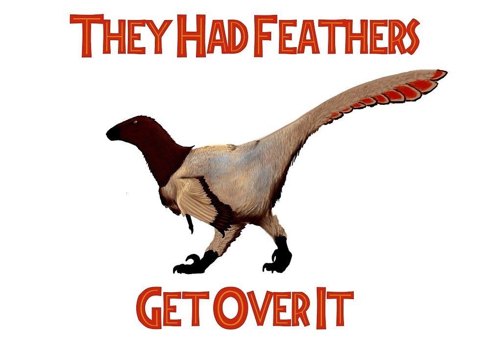 Feathers - Get Over It by pmraptor115