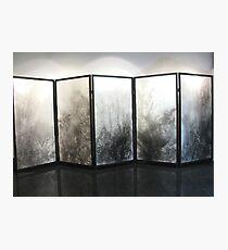 Five panel screen Photographic Print