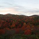 Fall Color Explosion in Blue Ridge by middleofaplace
