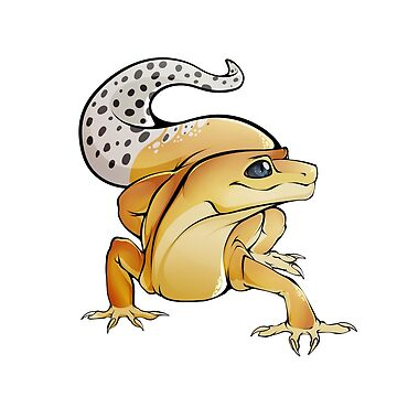 Leopard Gecko by Phoeberia