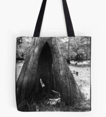 Cypress Cave Tote Bag