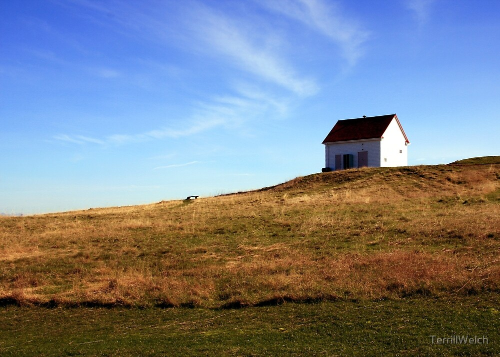 building on a hill by TerrillWelch