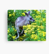Grey On Yellow Canvas Print