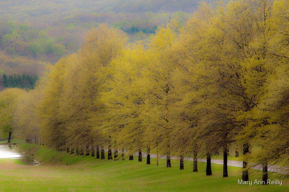 Spring by Mary Ann Reilly
