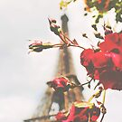 Eiffel Tower in Roses by CityMystic