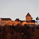 Burg Hohenklingen von Country  Pursuits