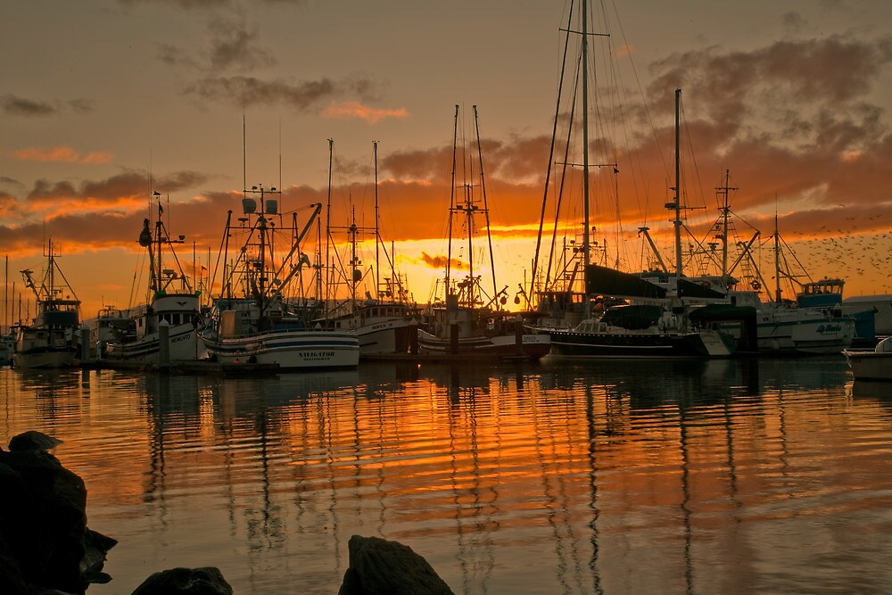 Fishing Fleet Sunset by lizalady