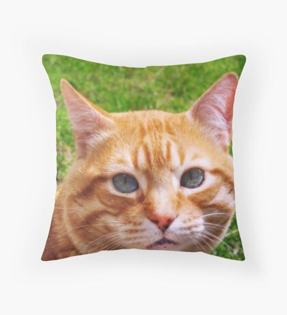 My Owner Throw Pillow
