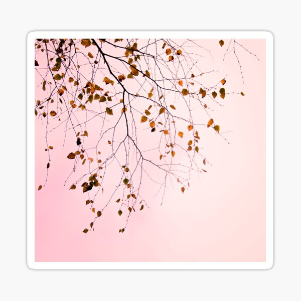 leaves on a pink sky Sticker