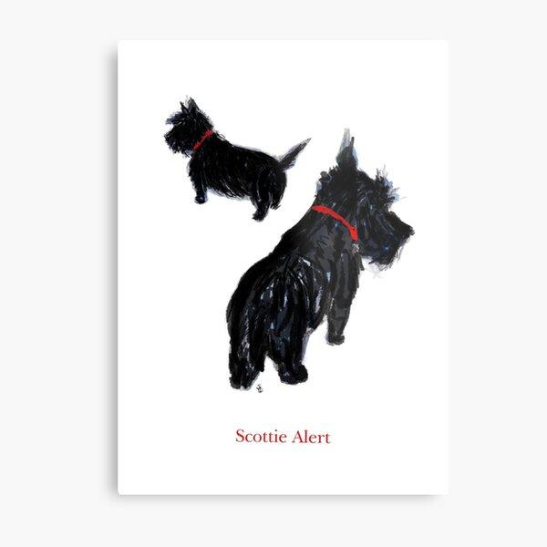"""Two Scottie Dogs in """"Scottie Alert!"""" Metal Print"""